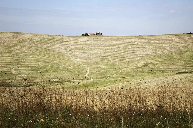 tuscany_15.jpg