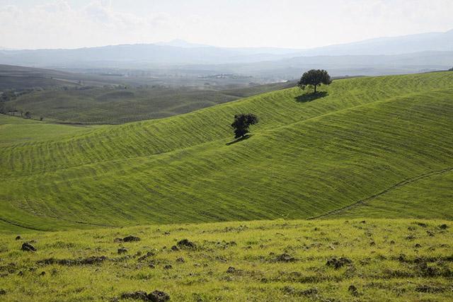 tuscany_16.jpg