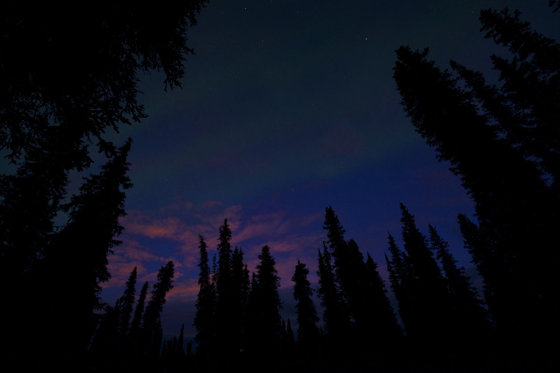 wse.aurora1.jpg